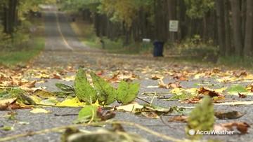 Rainy, fall conditions across Kalamazoo