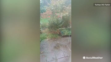 Garden threatened by onslaught of hail