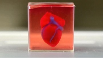 Scientists 3D-Printed First Heart with Human Tissue, Blood Vessels