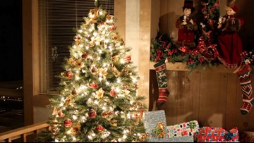 Real or Faux: Which Christmas Tree Is Better for the Environment?
