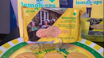 Girl Scouts unveil new cookie flavor