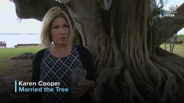 'I'm not a whack job': Florida woman marries 100-year-old tree