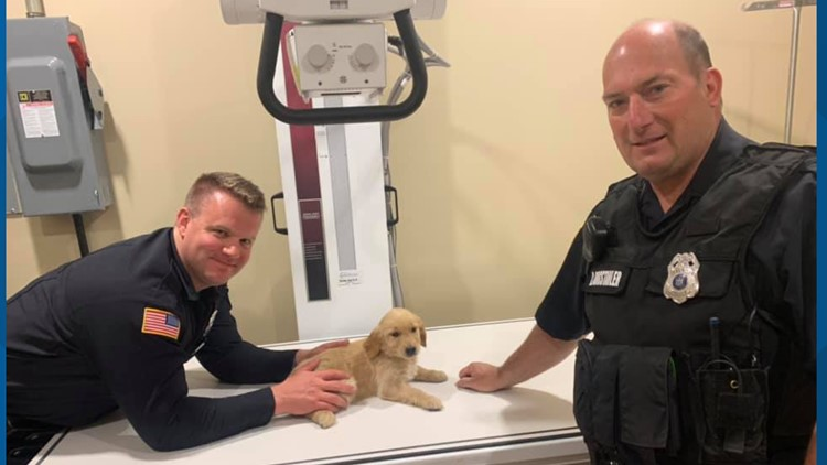 Eden Police officers credited with saving puppy from choking