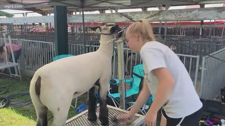 First of WNY county fairs canceled last year makes triumphant return