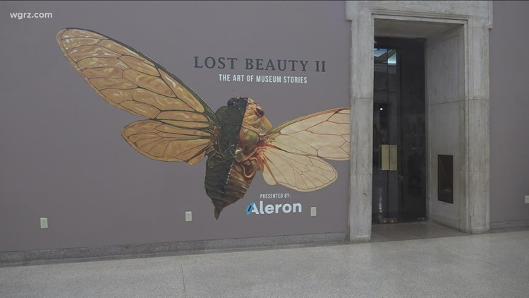 Lost Beauty II at the Buffalo Museum of Science