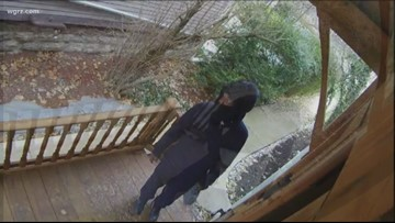 Buffalo Police Look For  Package Thief