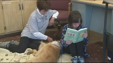 Williamsville Central schools approve new therapy dog policy
