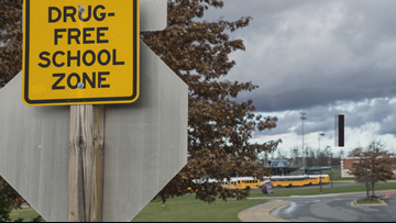 Breakdown of violent/disruptive school incidents in Western New York