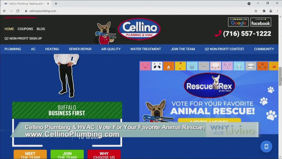 June 5 - Cellino Plumbing & HVAC