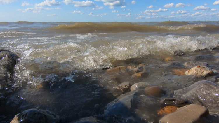 In hot water: how climate change is affecting life in Lake Erie