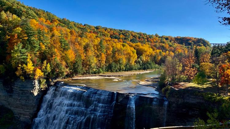 Construction has begun on new Autism Nature Trail at Letchworth State Park