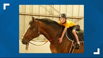 73rd Annual Buffalo International Horse Show