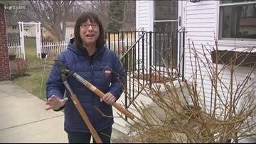 2 the Garden: Time to evaluate winter damage