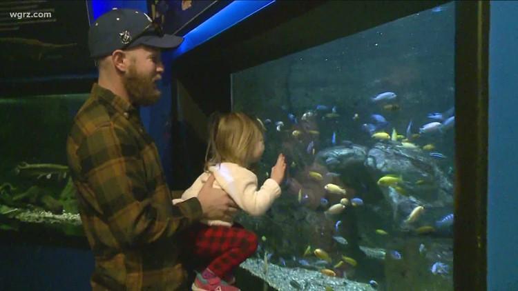 Halloween activities happening each Saturday in October at Aquarium of Niagara