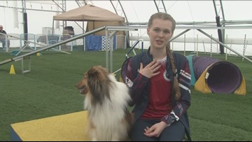 WNY's Great Kids: Albion teen handler and dog to represent Team USA in agility competition