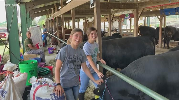 Genesee County Fair in full swing