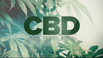 CBD 101: What you need to know, plus products put to the test