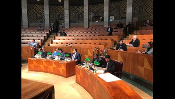 Common Council tables new fiber franchise agreement