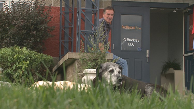 Western New York veterinarian addresses high suicide rate in his field