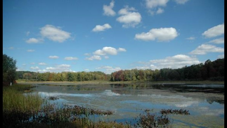 Beaver Meadow: Close by, but a world away