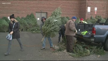 Free Christmas Trees Available Today