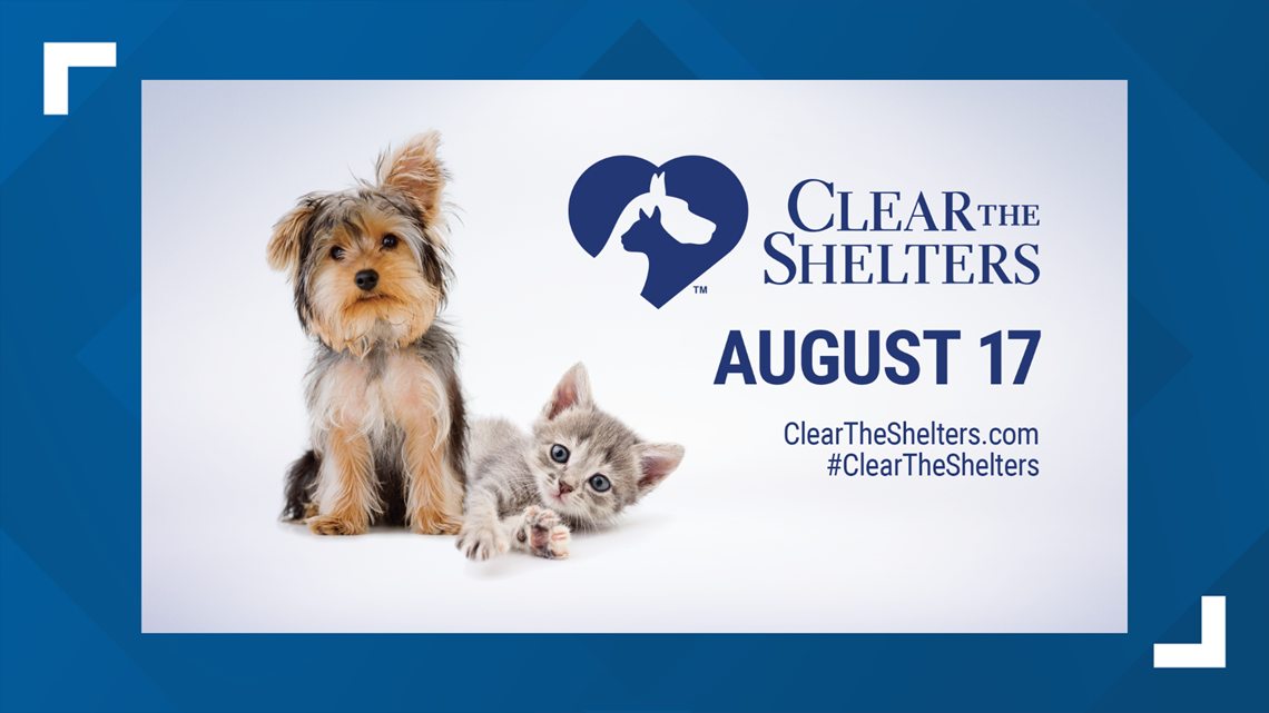 Calling All Animal Shelters and Pet Adoption Organizations