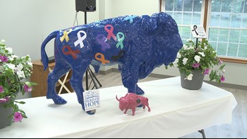 North Collins to have first community-funded Herd of Hope buffalo