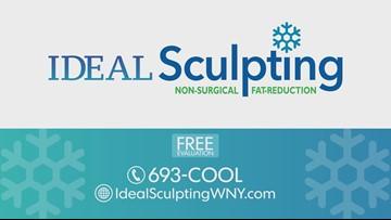 January 11 - Ideal Sculpting
