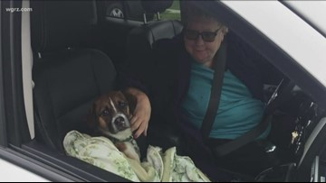 Missing dog brings two local families together