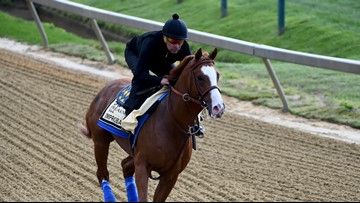 Improbable the favorite in Preakness