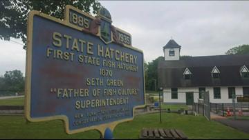 Unknown Stories: Oldest fish hatchery in the Western Hemisphere
