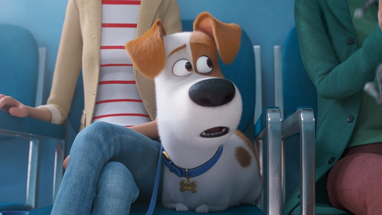 Oswalt The Secret Life of Pets