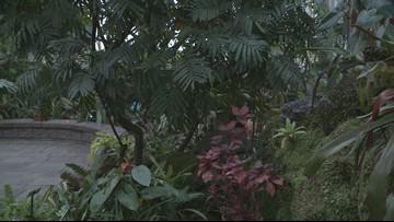 Buffalo Botanical Gardens Offers $1 Admission on Friday