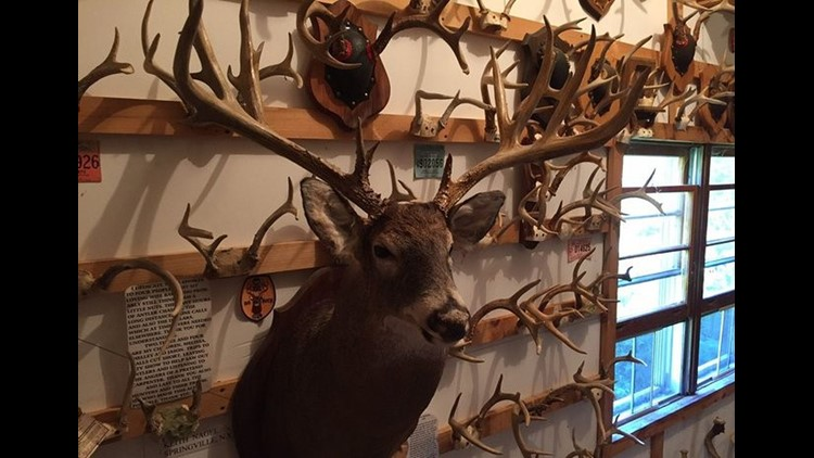 Want to see the largest collection of antlers in the eastern US?