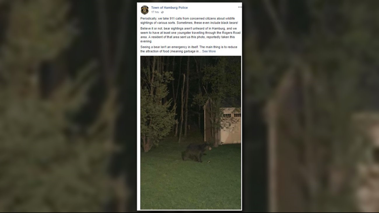 Hamburg Police are warning residents to keep an eye out for bears.