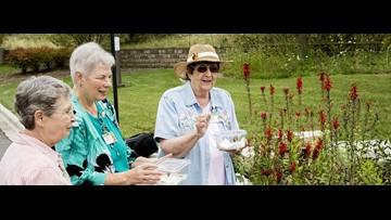Assisted Living vs. Nursing Home Care