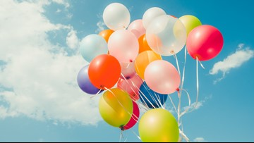 Environmentalists warn: Balloons provide no joy for wildlife