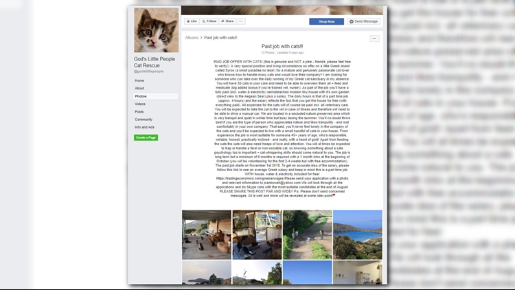 God's Little People Cat Rescue in Syros, Greece is looking for a caretaker for when the owner needs to be away.