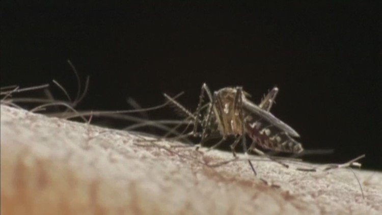 The Chautauqua County Health Department is warning residents after two confirmed cases of West Nile virus are found.