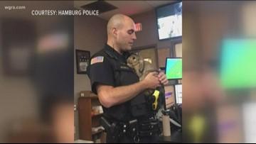 Hamburg Police: Please don't abandon pets
