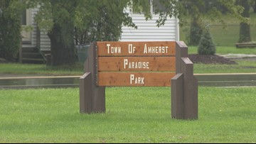 Pickleball courts proposed for Amherst