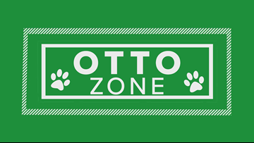 'Otto Zone': Week by week predictions for the Bills season