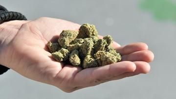 Niagara Co. Board of Health opposes recreational marijuana
