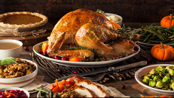 Turkey salmonella outbreak: What to know for Thanksgiving dinner table