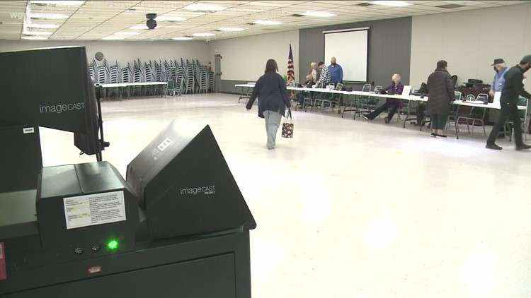 Niagara County gets out to vote