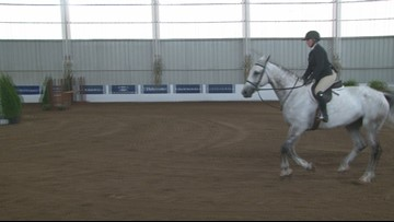 International Horse Show happening this weekend