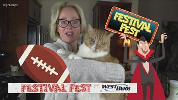 Festival Fest: Sept 21st and Sept 22nd