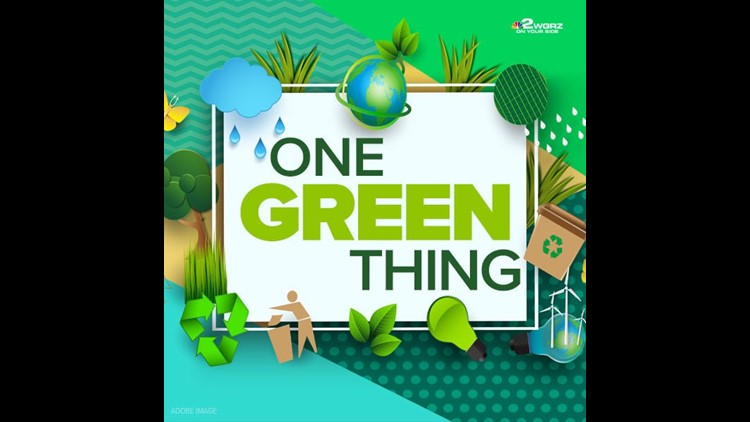 One Green Thing: simple steps to become more eco-friendly