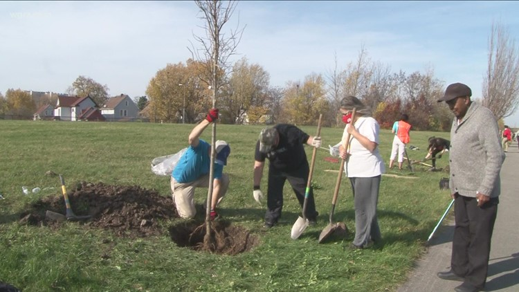 Re-Tree continues work to reforest Buffalo