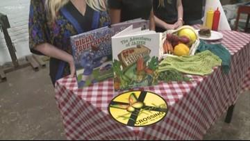 New Elmwood Village Festival will celebrate Buffalo's eco-friendly businesses